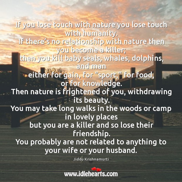 Camp Quotes On IdleHearts