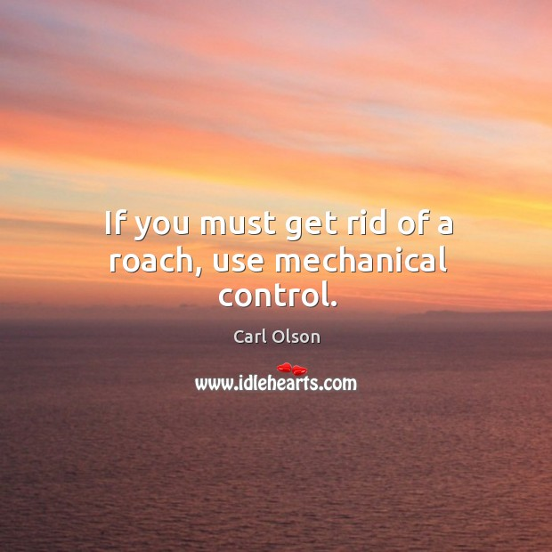 Image, If you must get rid of a roach, use mechanical control.