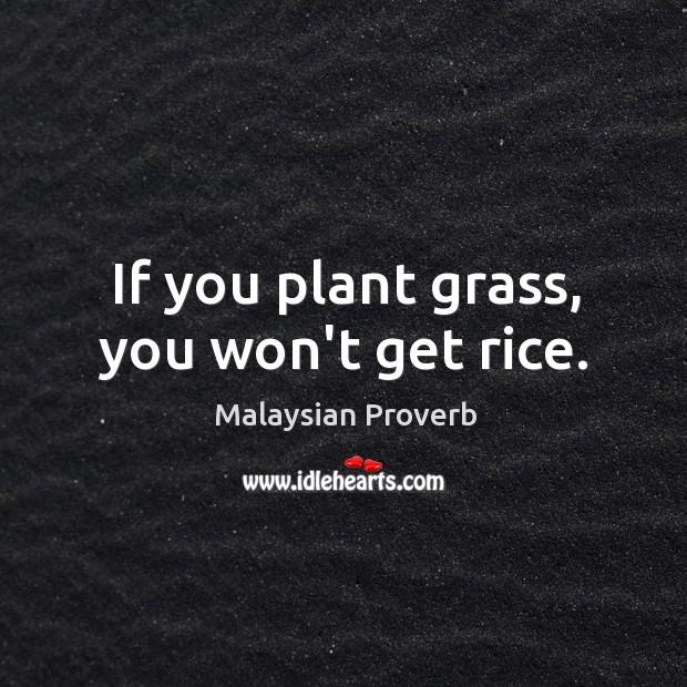 Malaysian Proverbs