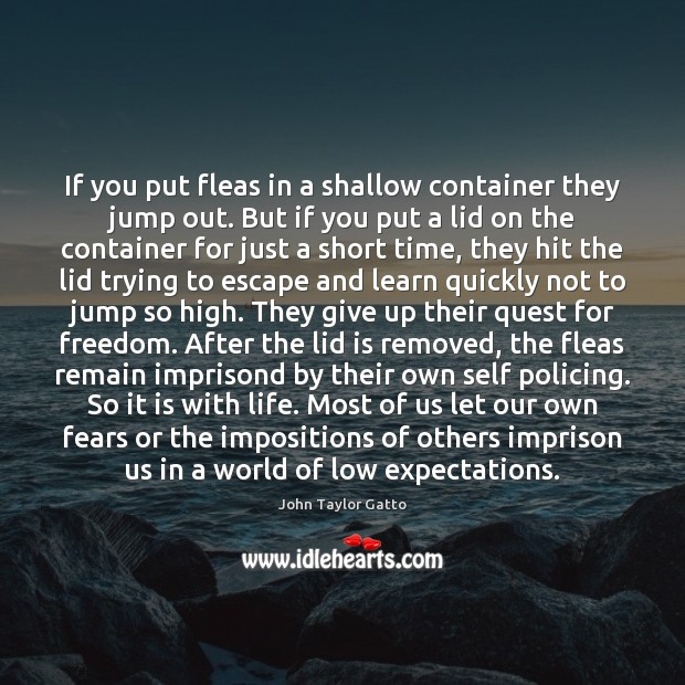 If you put fleas in a shallow container they jump out. But Image