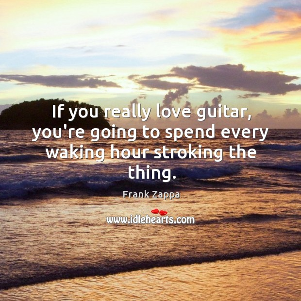 Image, If you really love guitar, you're going to spend every waking hour stroking the thing.