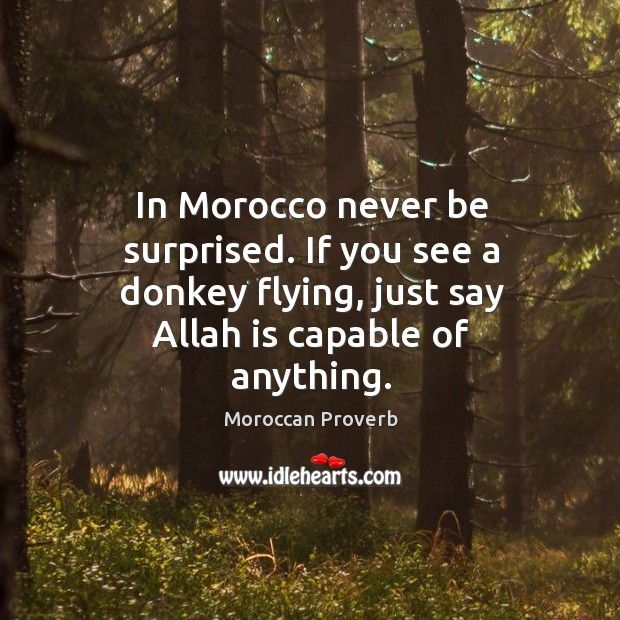 If you see a donkey flying, just say allah is capable of anything. Moroccan Proverbs Image