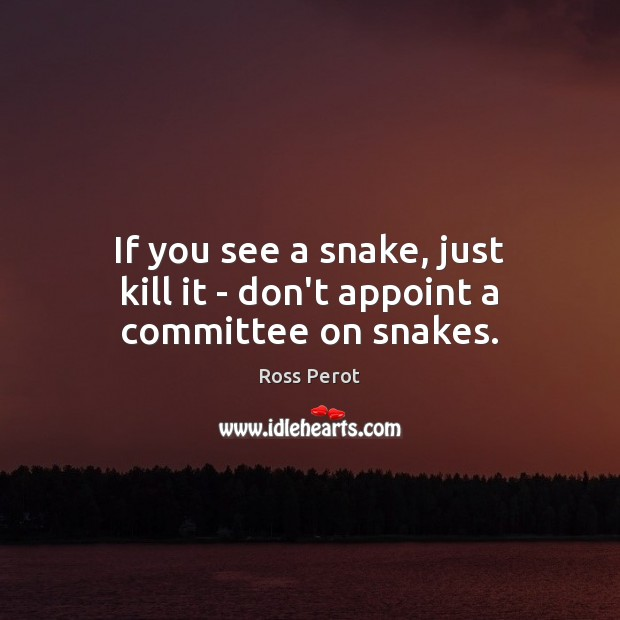 If you see a snake, just kill it – don't appoint a committee on snakes. Ross Perot Picture Quote