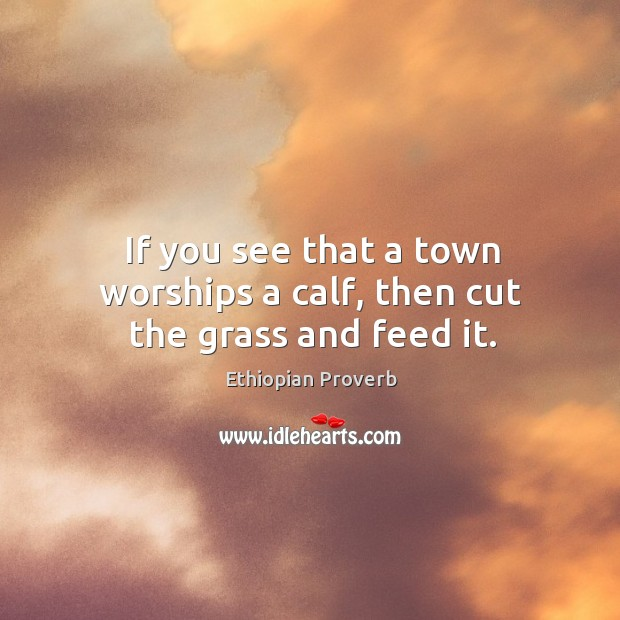 If you see that a town worships a calf, then cut the grass and feed it. Ethiopian Proverbs Image