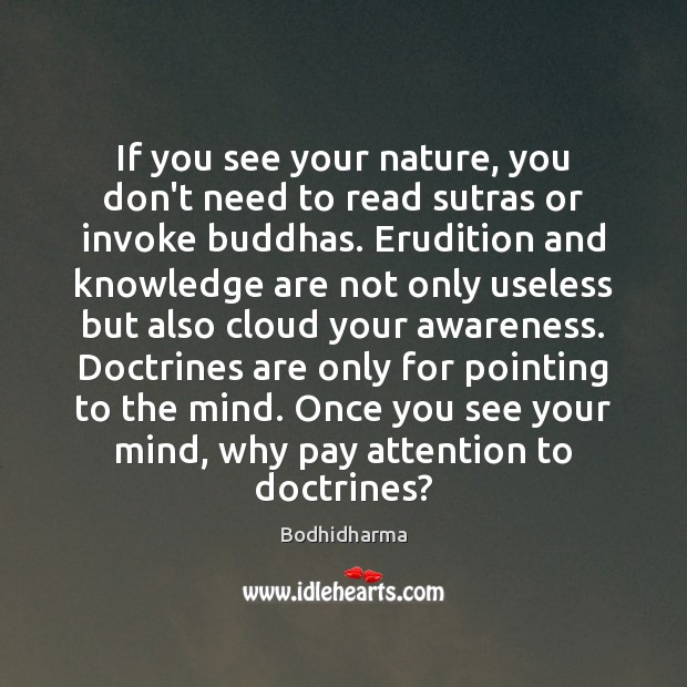 If you see your nature, you don't need to read sutras or Bodhidharma Picture Quote