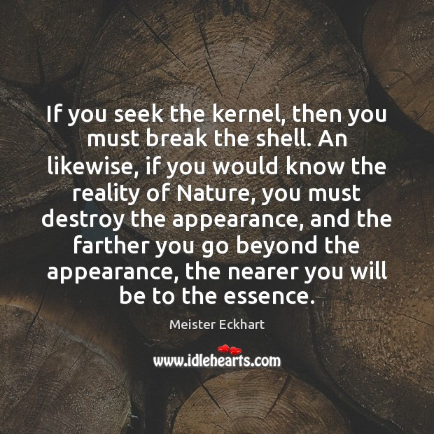 If you seek the kernel, then you must break the shell. An Image