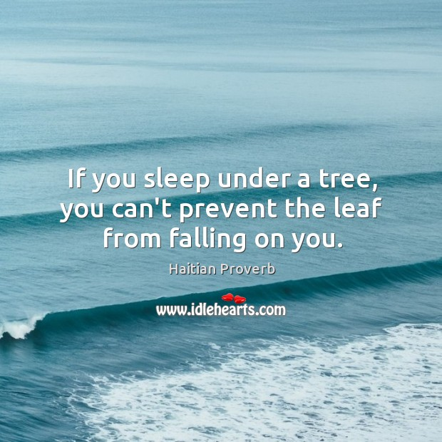 If you sleep under a tree, you can't prevent the leaf from falling on you. Haitian Proverbs Image