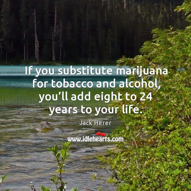 If you substitute marijuana for tobacco and alcohol, you'll add eight to 24 years to your life. Jack Herer Picture Quote