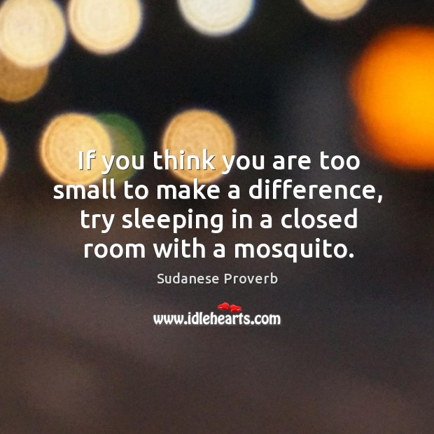 If you think you are too small to make a difference, try sleeping in a closed room with a mosquito. Sudanese Proverbs Image