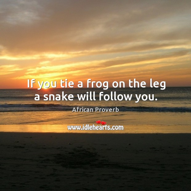 Image, If you tie a frog on the leg a snake will follow you.