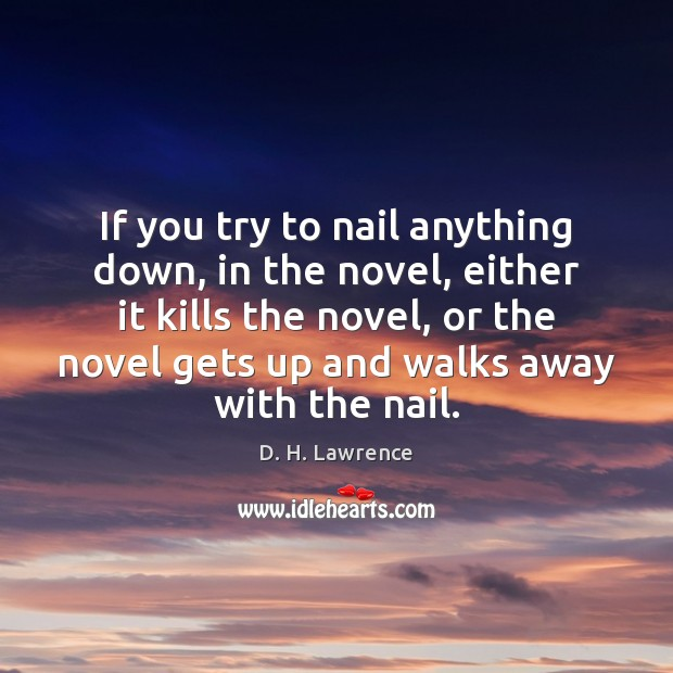 Image, If you try to nail anything down, in the novel, either it