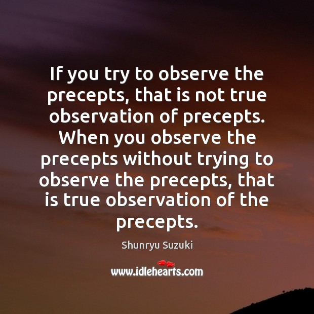 Image, If you try to observe the precepts, that is not true observation