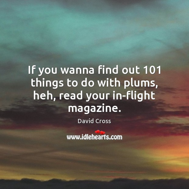 If you wanna find out 101 things to do with plums, heh, read your in-flight magazine. David Cross Picture Quote