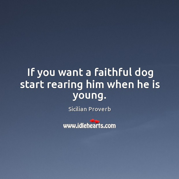 Image, If you want a faithful dog start rearing him when he is young.