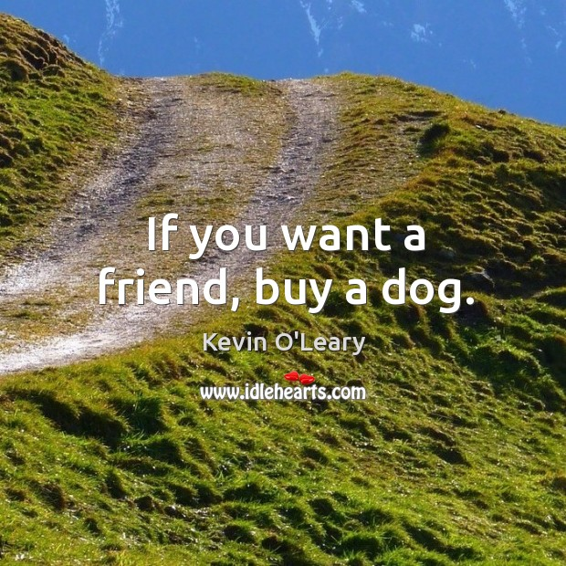 If you want a friend, buy a dog. Image