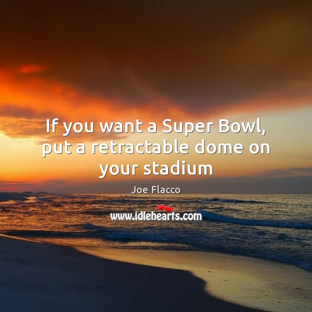 Picture Quote by Joe Flacco