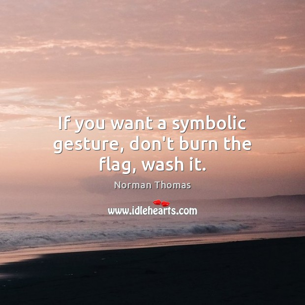 If you want a symbolic gesture, don't burn the flag, wash it. Image