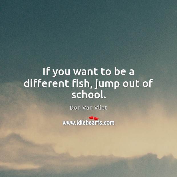 Image, If you want to be a different fish, jump out of school.