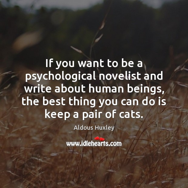 Image, If you want to be a psychological novelist and write about human