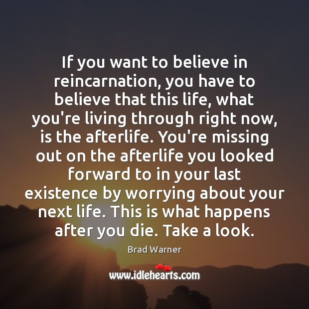 If you want to believe in reincarnation, you have to believe that Brad Warner Picture Quote