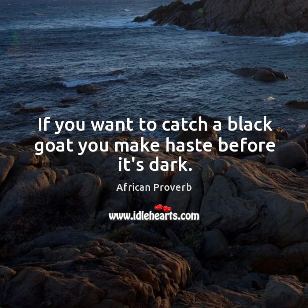 Image, If you want to catch a black goat you make haste before it's dark.