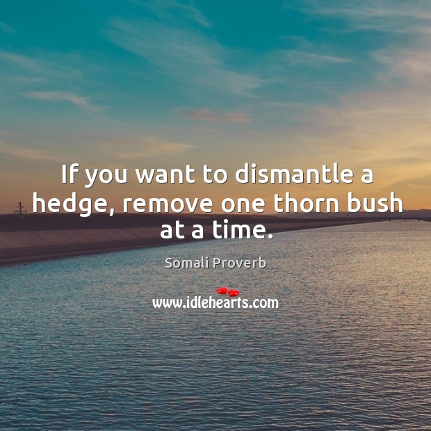 Image, If you want to dismantle a hedge, remove one thorn bush at a time.