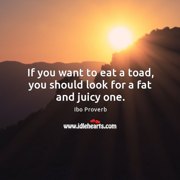 If you want to eat a toad, you should look for a fat and juicy one. Ibo Proverbs Image