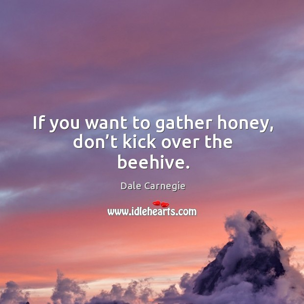 Image, If you want to gather honey, don't kick over the beehive.
