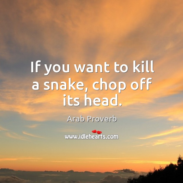 If you want to kill a snake, chop off its head. Arab Proverbs Image
