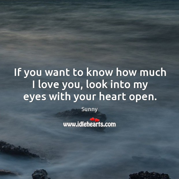 Image, If you want to know how much I love you, look into my eyes with your heart open.