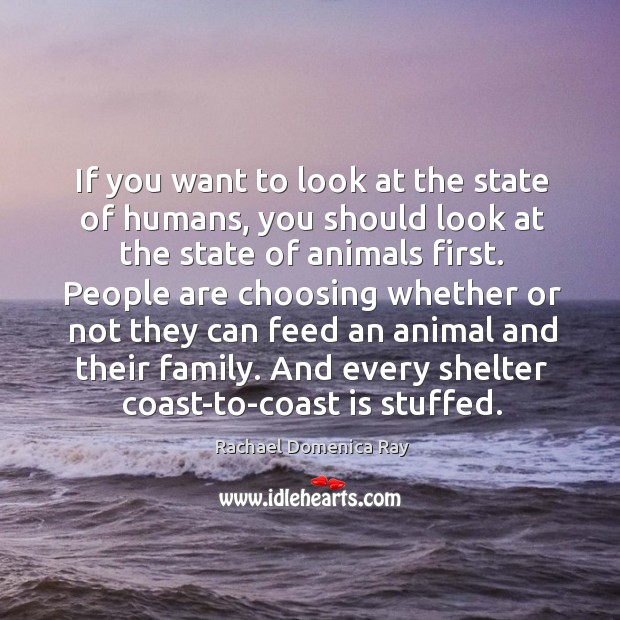 If you want to look at the state of humans, you should look at the state of animals first. Rachael Domenica Ray Picture Quote