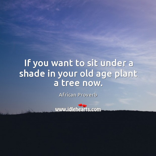 Image, If you want to sit under a shade in your old age plant a tree now.