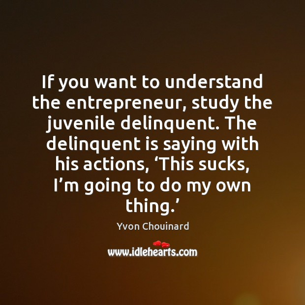 If you want to understand the entrepreneur, study the juvenile delinquent. The Image