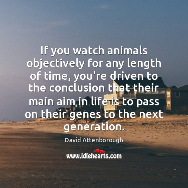 Image, If you watch animals objectively for any length of time, you're driven