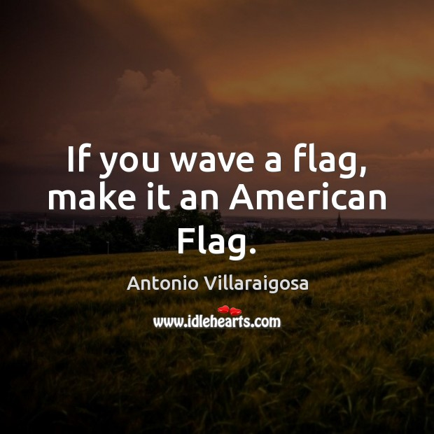 Image, If you wave a flag, make it an American Flag.