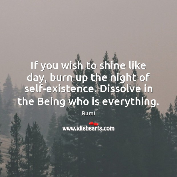 If you wish to shine like day, burn up the night of Rumi Picture Quote