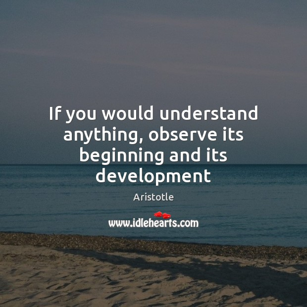 If you would understand anything, observe its beginning and its development Aristotle Picture Quote