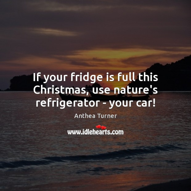 Image, If your fridge is full this Christmas, use nature's refrigerator – your car!