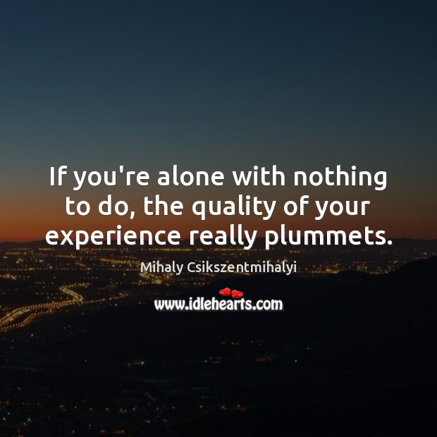 If you're alone with nothing to do, the quality of your experience really plummets. Mihaly Csikszentmihalyi Picture Quote