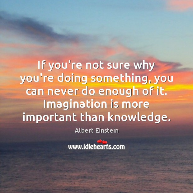 If you're not sure why you're doing something, you can never do Imagination Quotes Image