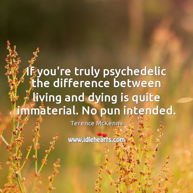 If you're truly psychedelic the difference between living and dying is quite Image