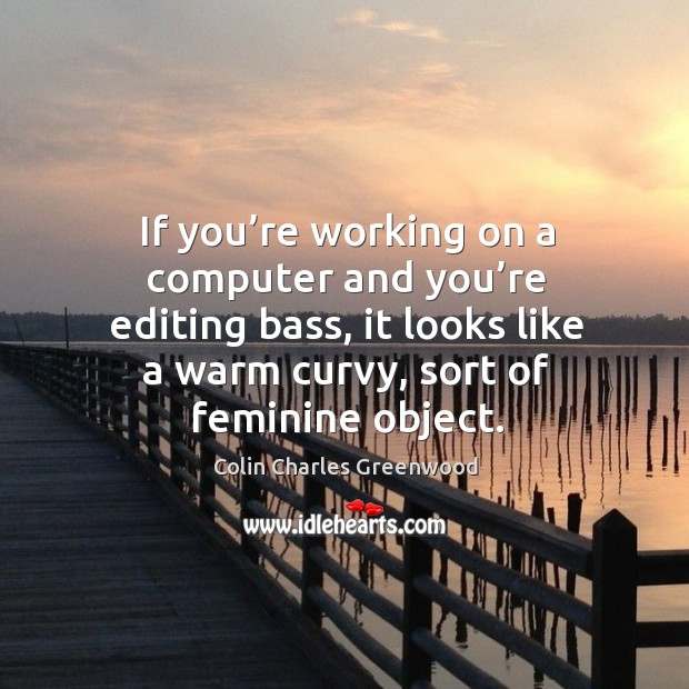 If you're working on a computer and you're editing bass, it looks like a warm curvy, sort of feminine object. Colin Charles Greenwood Picture Quote