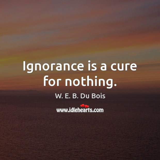 Ignorance is a cure for nothing. W. E. B. Du Bois Picture Quote