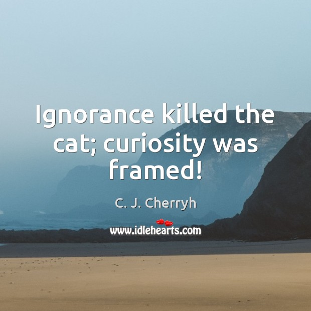 Image, Ignorance killed the cat; curiosity was framed!