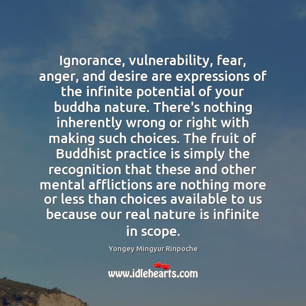 Ignorance, vulnerability, fear, anger, and desire are expressions of the infinite potential Image