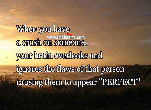 "When you have a crush on someone, they appear ""perfect"" Image"
