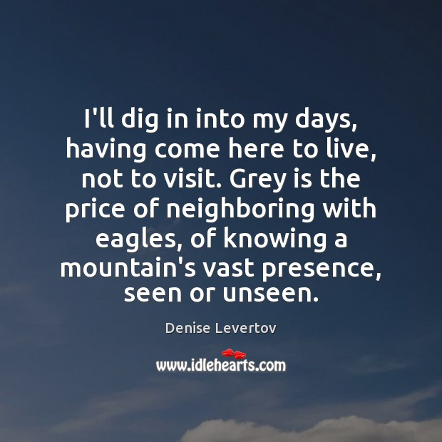 I'll dig in into my days, having come here to live, not Image