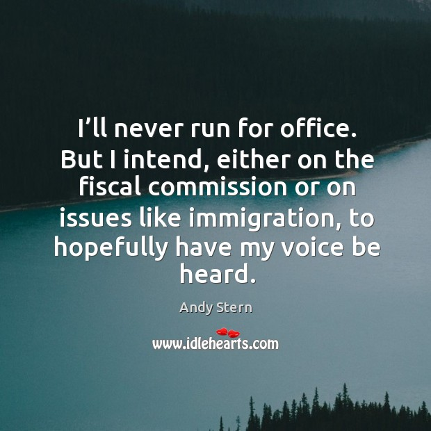 Image, I'll never run for office. But I intend, either on the fiscal commission or on issues like immigration