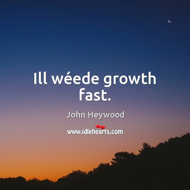 Ill wéede growth fast. John Heywood Picture Quote