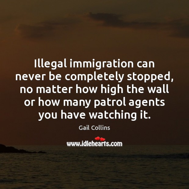Illegal immigration can never be completely stopped, no matter how high the Image